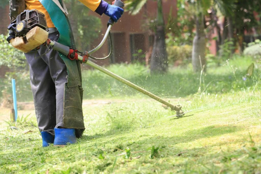 garden and lawn maintenance