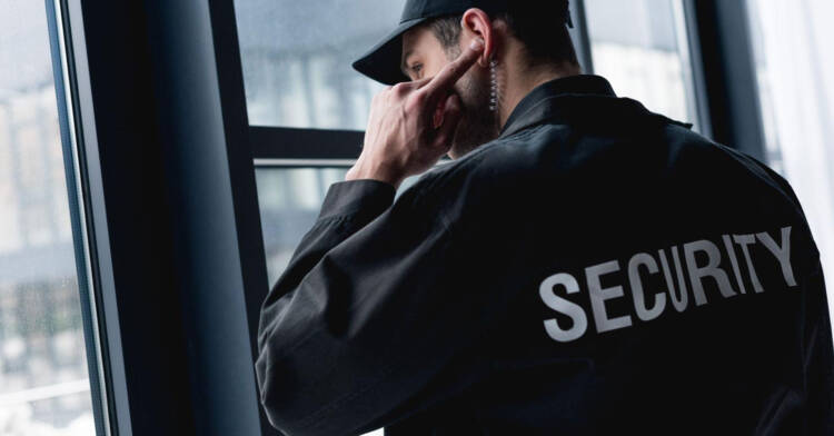 security services type